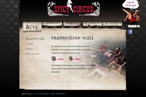 spicycircus
